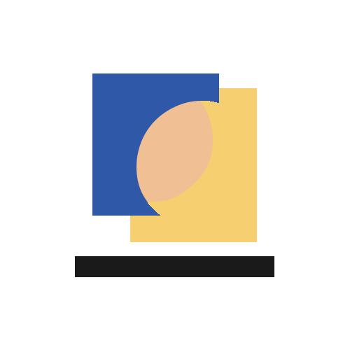 ECHO Perspective